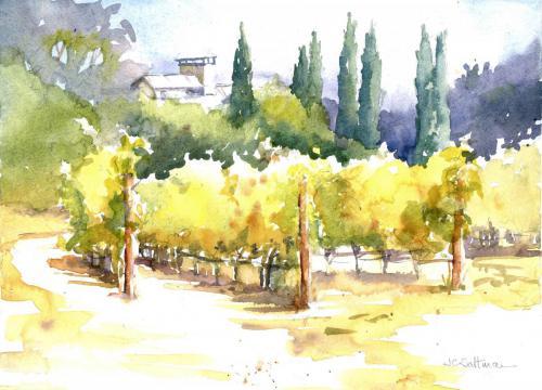 Portola Vineyards